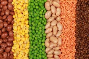 proteina vegetal ok