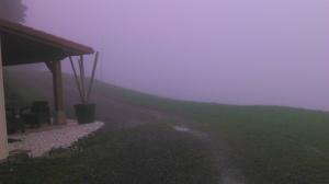 Niebla caserio